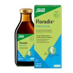 Salus® Floradix® Eisen plus B12 vegan
