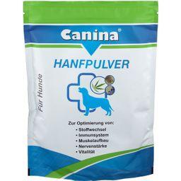 Canina® Hanfpulver