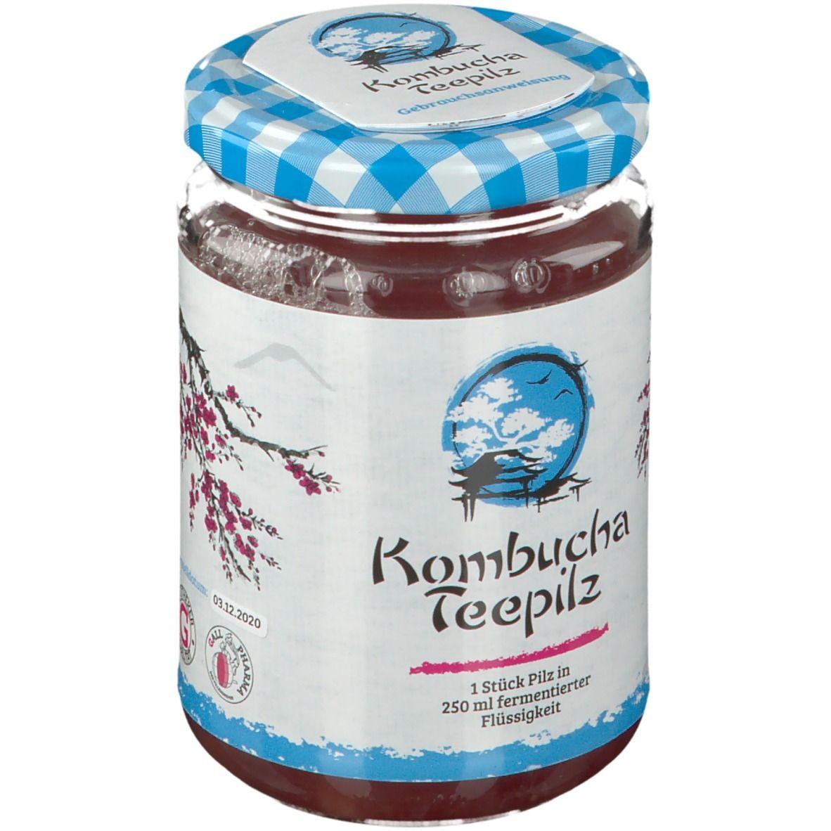 GALL PHARMA Kombucha Teepilz