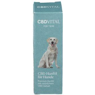 CBDVITAL Hanföl für Hunde