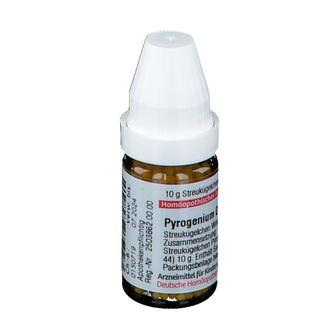 DHU Pyrogenium D6
