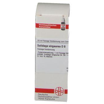 DHU Solidago Virgaurea D8